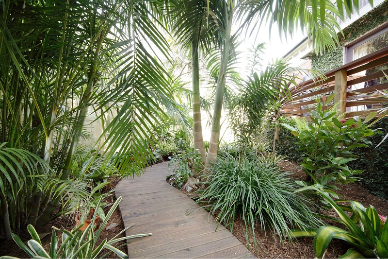 Balinese Style Garden Manly Front Pathway
