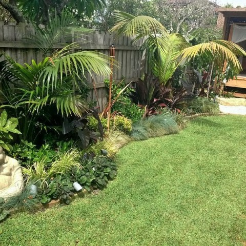 Tropical Garden Design Northern Beaches