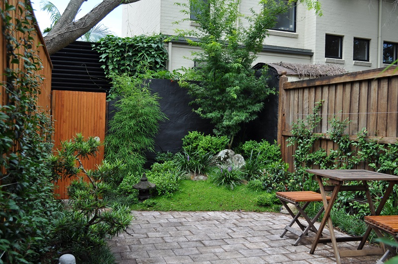 Japanese courtyard garden inner west sydney landscapers for Small garden courtyard designs