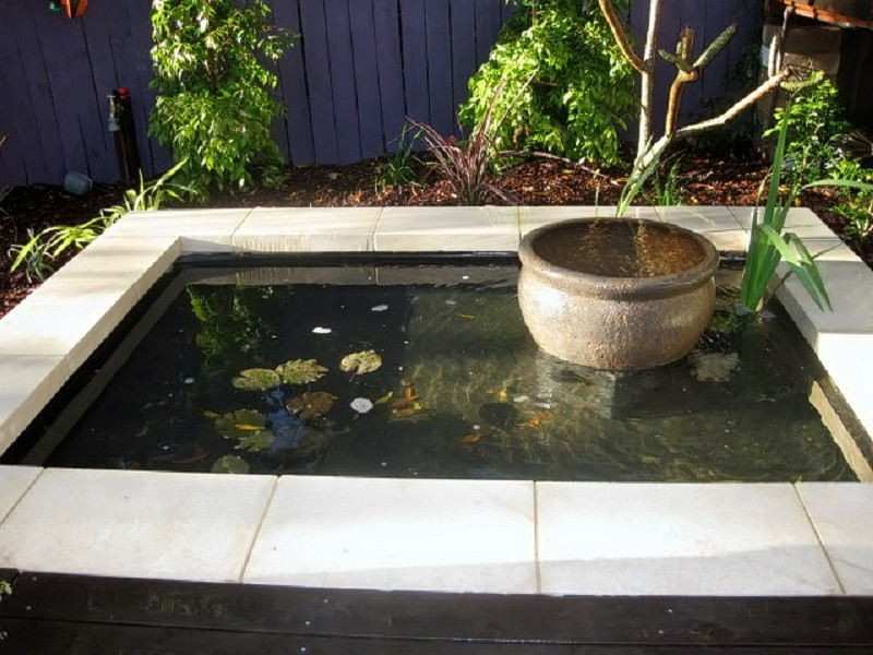 Water bowl pond water feature northern beaches for Pond water features