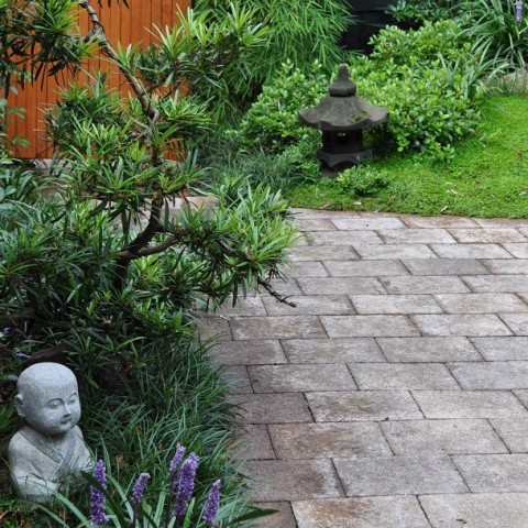 Japanese Courtyard Annandale Inner West Sydney
