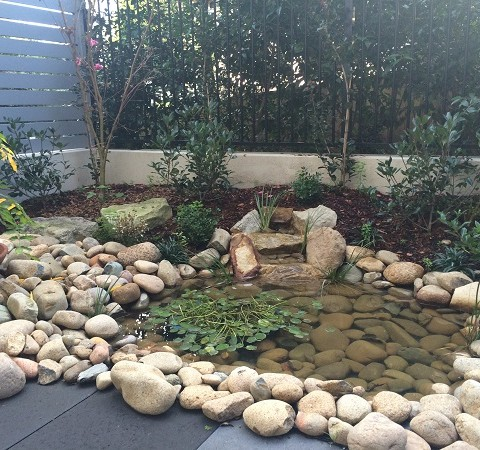 Modern Terrace Courtyard Sydney Small Garden Inner West