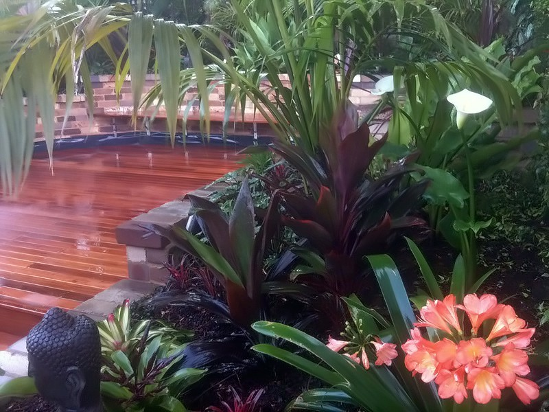 Balinese garden design rozelle inner west sydney for Garden designs sydney