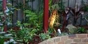 small-garden-landscaping