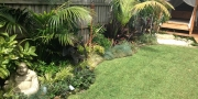 after-landscaping-photo