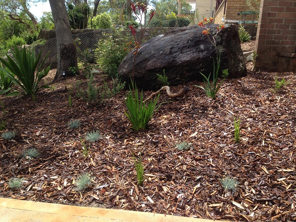 native garden design sydney