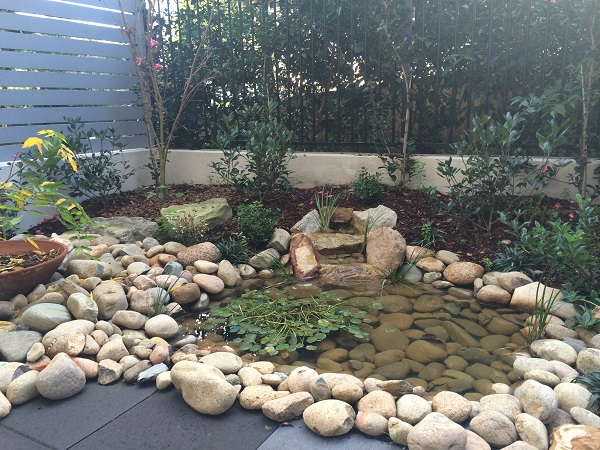 small courtyard garden design sydney