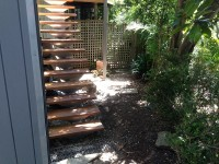tropical courtyard landscape makeover sydney